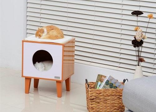 Nên trang bị nhà cho thú cưng ngay từ ban đầu để chăm sóc thú cưng của mình