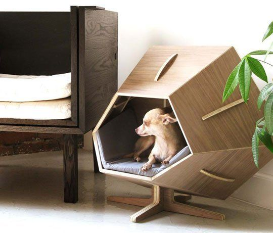 Nhà cho thú cưng giúp bảo vệ và thể hiện tình thương của gia chủ với thú cưng